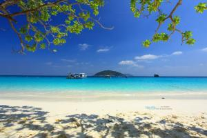 Similan Island: Full Day Snorkeling Tour Packages